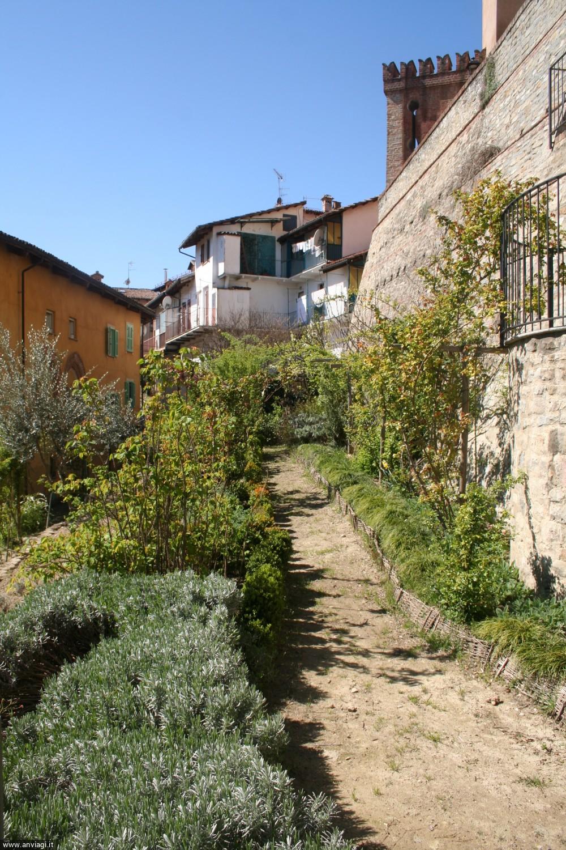 Un orto posto di fronte alla valle della Fava a Barolo. <span class='photo-by'>Photo: Diego De Finis.</span>
