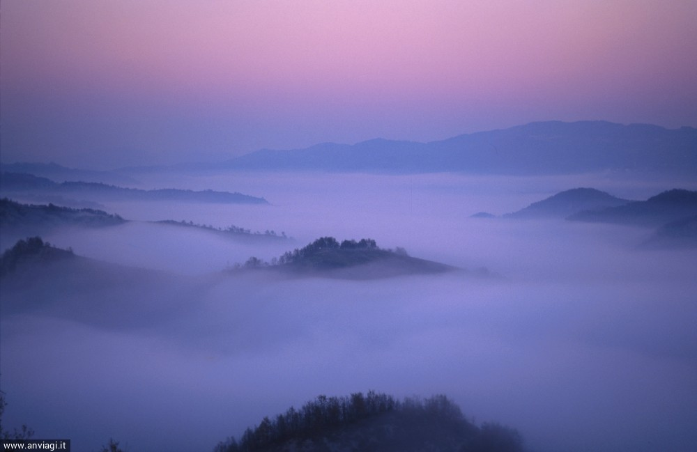 Nebbia sulle colline